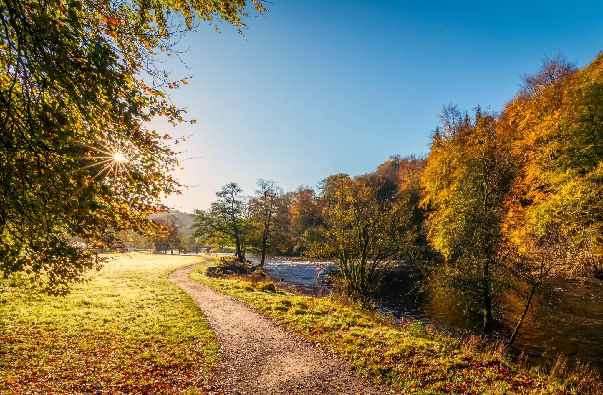 Autumn Trail UK